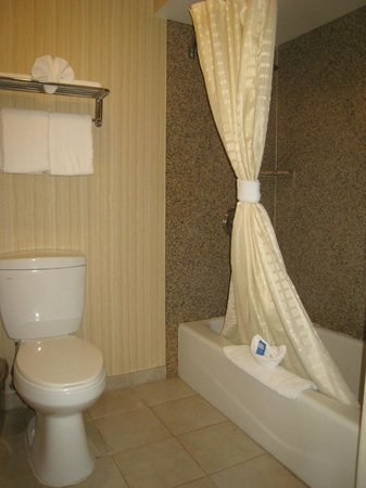 Oak Tree Inn: Bathroom