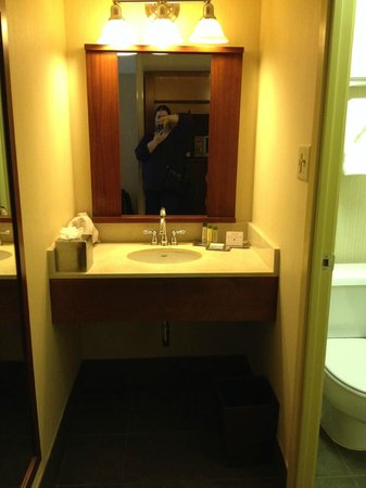 DoubleTree DFW Airport North: Separate vanity/good for couples