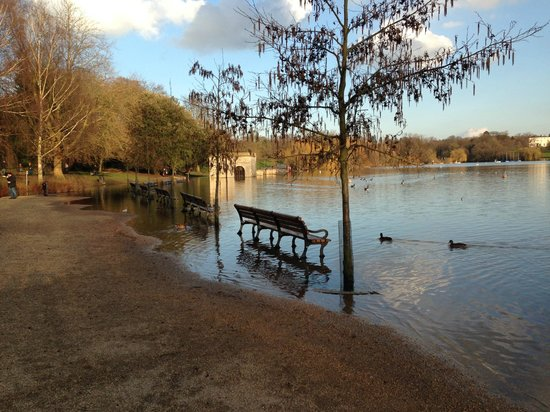 Mote Park: flooded lake