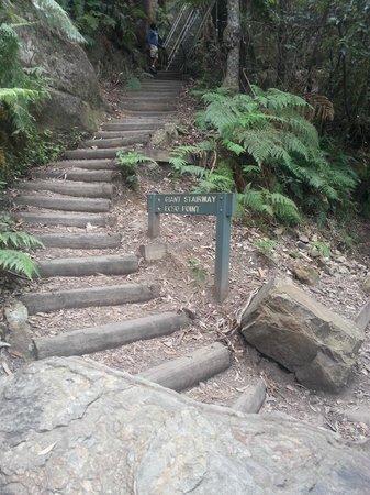 Lilianfels Resort & Spa - Blue Mountains: Giant Stairway
