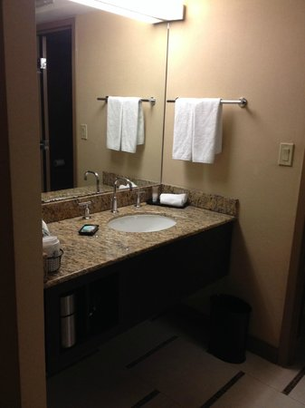 Hyatt Regency DFW: Separate vanity/sink