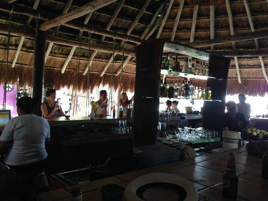Lido Club de Playa: Swings!