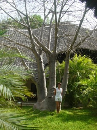 Kilili Baharini Resort & Spa: Grandioso