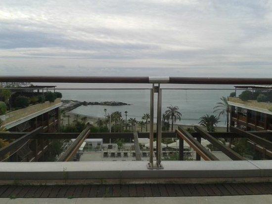 Gran Hotel Guadalpin Banus : View
