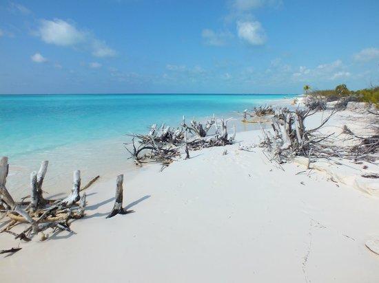 Bellissima Playa Paraiso