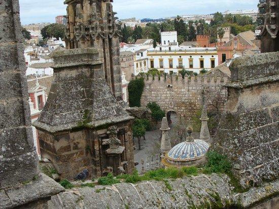 Catedral de Sevilla: tejados 1