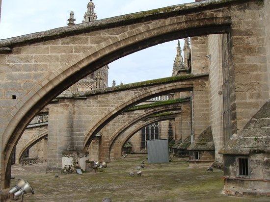 Catedral de Sevilla: tejados 2