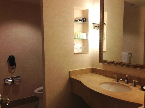 Grand Hyatt Atlanta in Buckhead: Bathroom