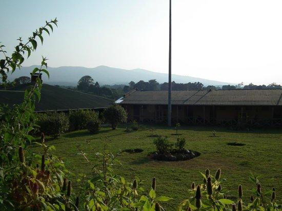 Ngorongoro Rhino Lodge: Edificios de las habitaciones.