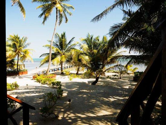 Portofino Beach Resort: grounds