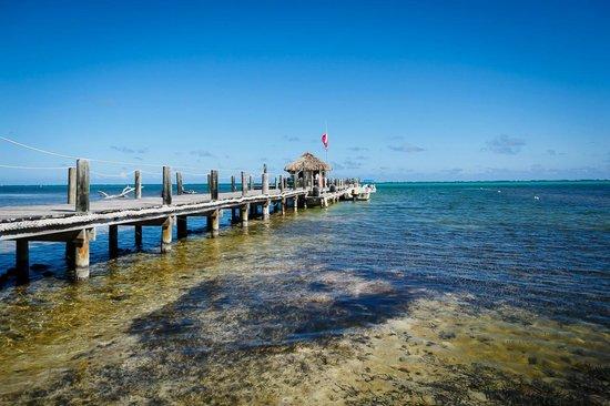 Portofino Beach Resort: dock