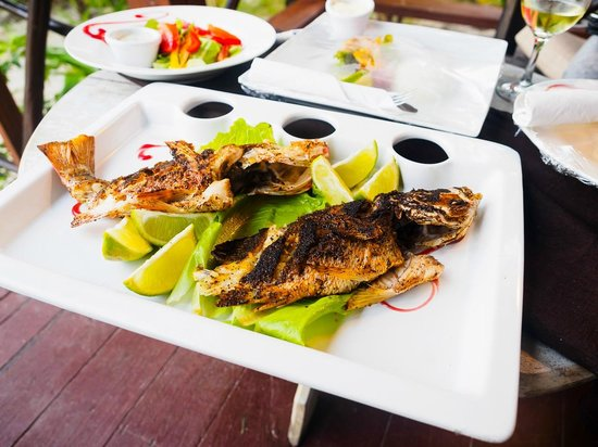 Portofino Beach Resort: I caught some Snapper and the chef cooked them perfectly