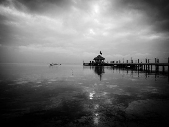 Portofino Beach Resort: dock from the shore