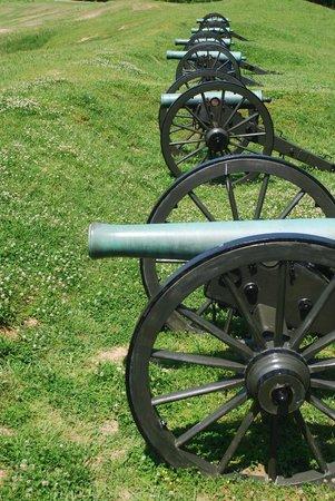 Vicksburg National Military Park: fila di cannoni
