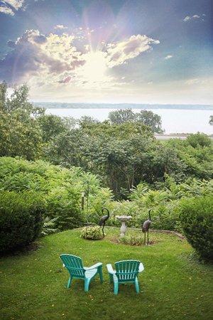 1907 Bragdon House Bed & Breakfast: Backyard view