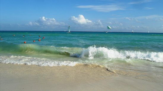 Viva Wyndham Maya : On the beach. Oh My!!