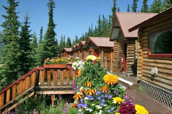 denali crow 39 s nest cabins 2017 prices hotel reviews