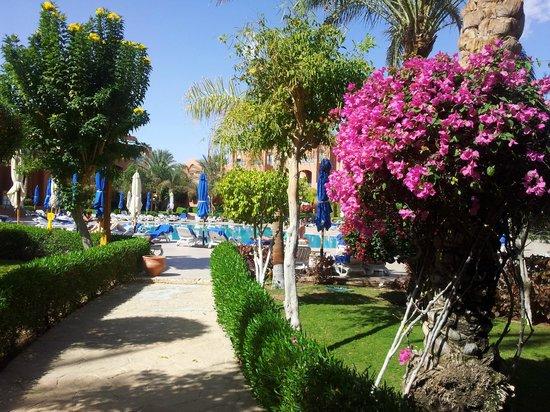 TUI Magic Life Sharm el Sheikh: Beautifully kept gardens