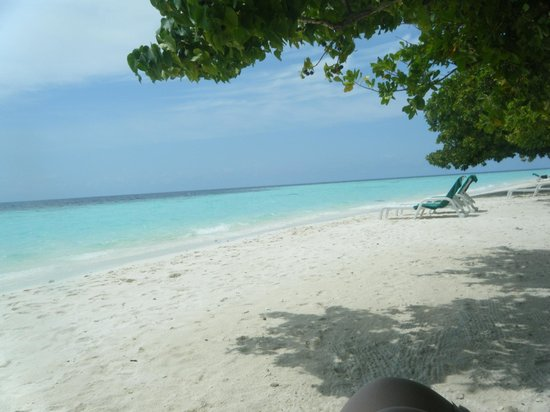 Biyadhoo Island Resort: beach view