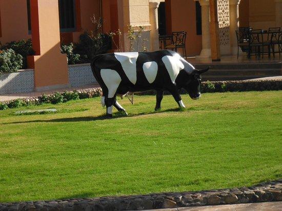 Aqua Vista: vache dans le jardin