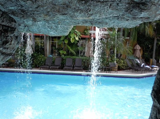 Embassy Suites by Hilton Fort Lauderdale 17th Street : Very nice pool