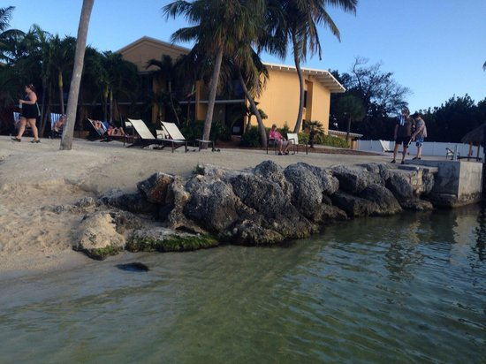 Hampton Inn Key Largo: The little beach with beautiful sunset.