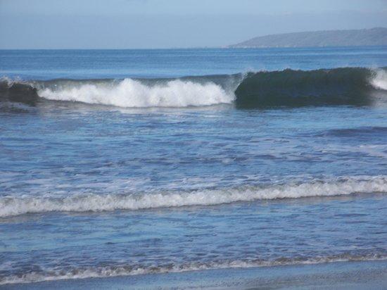 Occidental Nuevo Vallarta: olas en la playa del hotel