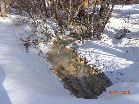 Fairmont Mountainside Vacation Villas: The Rambling Brook running thru the property
