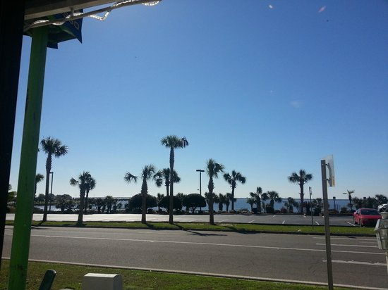 Bagelheads: The view from our table
