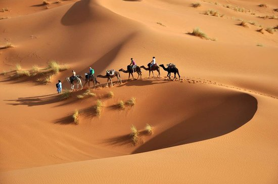Merzouga Morocco Tours: camel trekking and nghit in desert merzouga