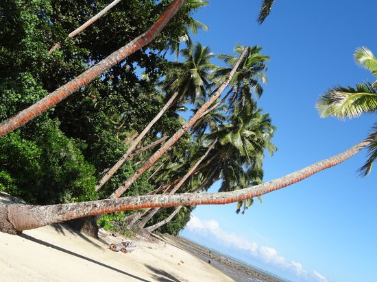 Wellesley Resort Fiji : A walk from resort!