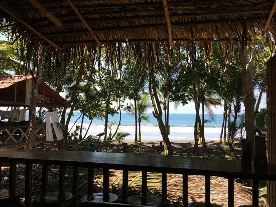 Vida Hermosa Bar y Restaurante: Beach view while eating amazing food! :-)