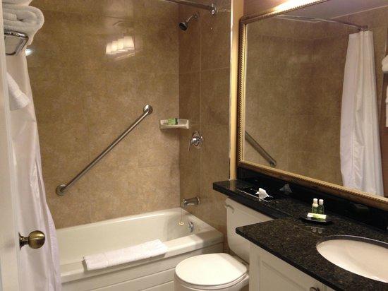 Albert at Bay Suite Hotel: very clean washrooms