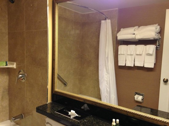 Albert at Bay Suite Hotel: very clean washrooms