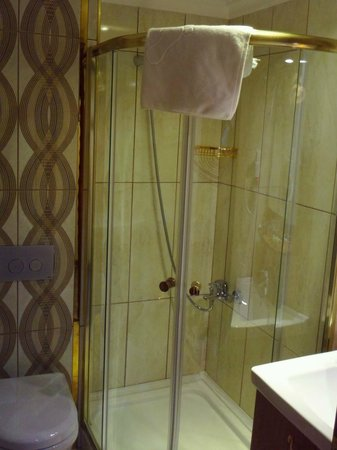 World Heritage Hotel Istanbul: The shower stall