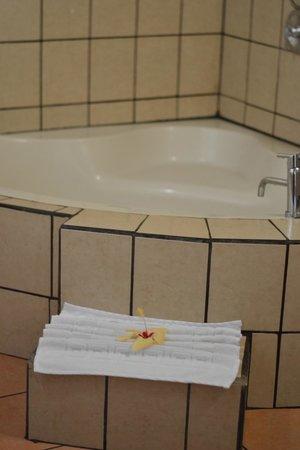 Hotel Campo Verde : Bathtub