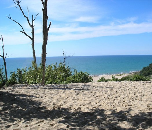 The View From Tower Hill Warren Dunes State Park