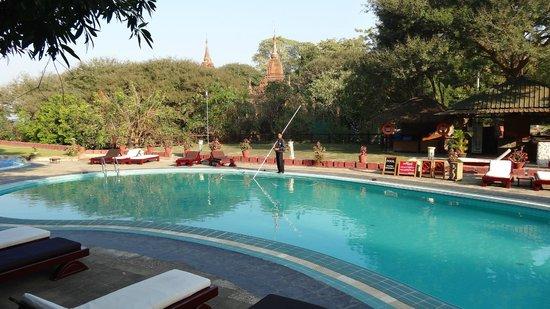Thande Hotel Bagan: Piscine