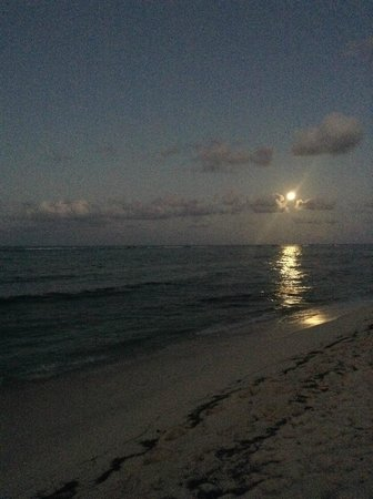 Wyndham Reef Resort : Full Moon Rising