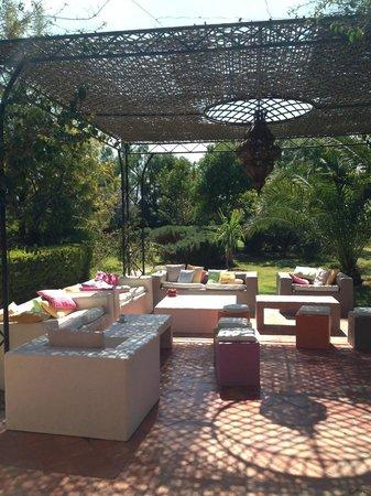 Le Salon Du Jardin Picture Of Villa Catherine Sidi