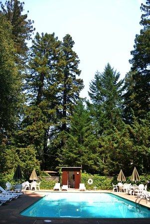 Photo of Redwoods River Resort & Campground Leggett