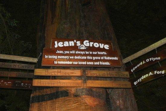 Redwoods River Resort & Campground: Jeans Memorial Grove
