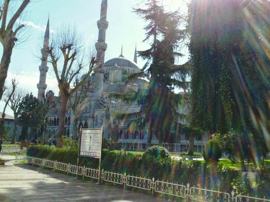 Mosquée Bleue (Sultan Ahmet Camii) : Nothing inside
