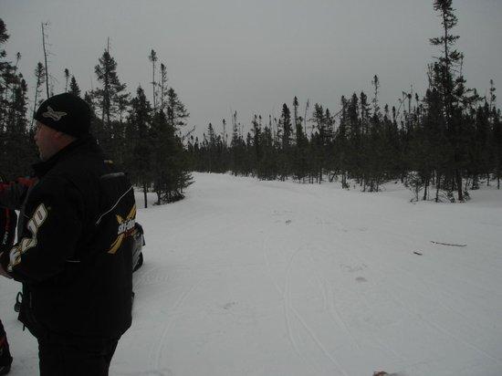 Ash Trail Lodge: Snowmobile trails