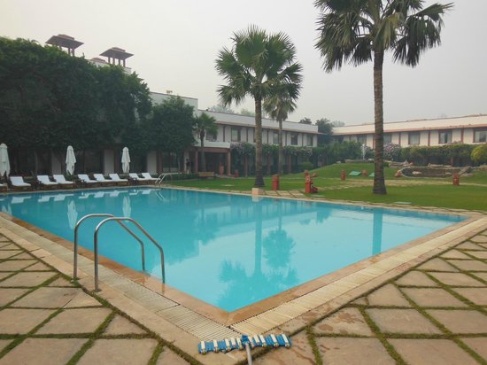 Trident, Agra : Pool area is lovely and shaded with palms