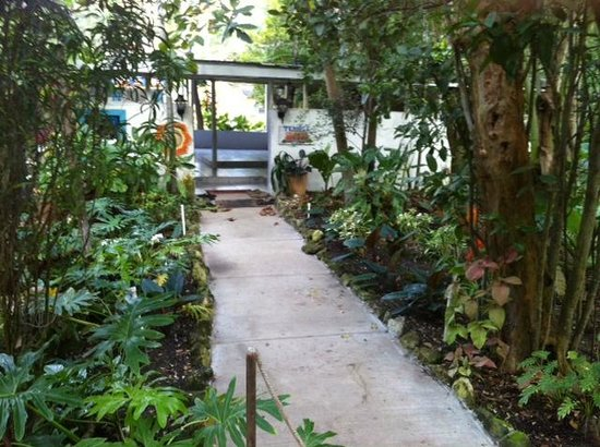 Sivananda Ashram Yoga Retreat Well Being Center: Path to the Temple