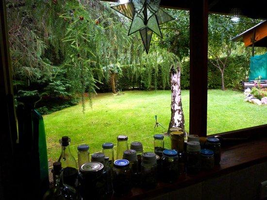 LLI Guest House: Jardín
