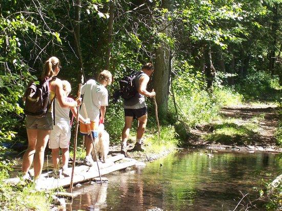 Kimberley Riverside Campground : Hiking