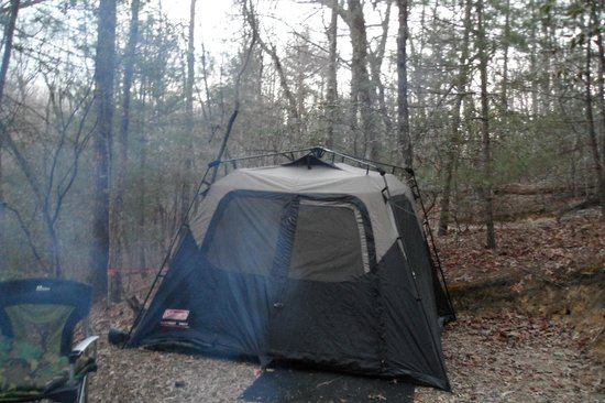 Ash Grove Mountain Cabins & Camping: Camp Site at Ash Grove Maypop