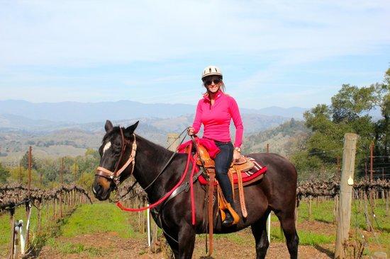 Chalk Hill Winery : Vineyard Trail Ride
